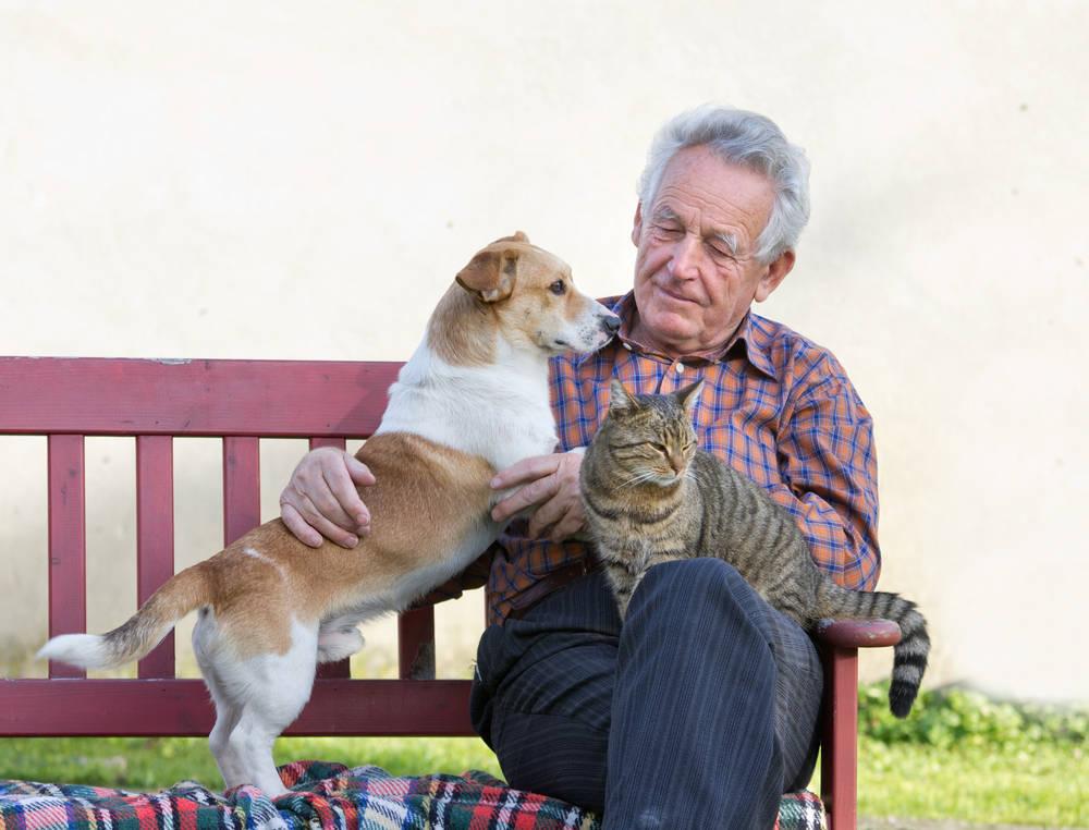 Los beneficios de los animales en los ancianos