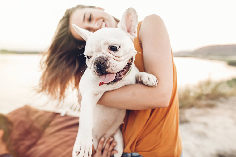 Con tu mascota de vacaciones