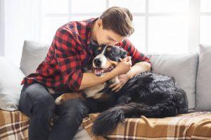 Consejos para el cuidado de un perro con edad avanzada