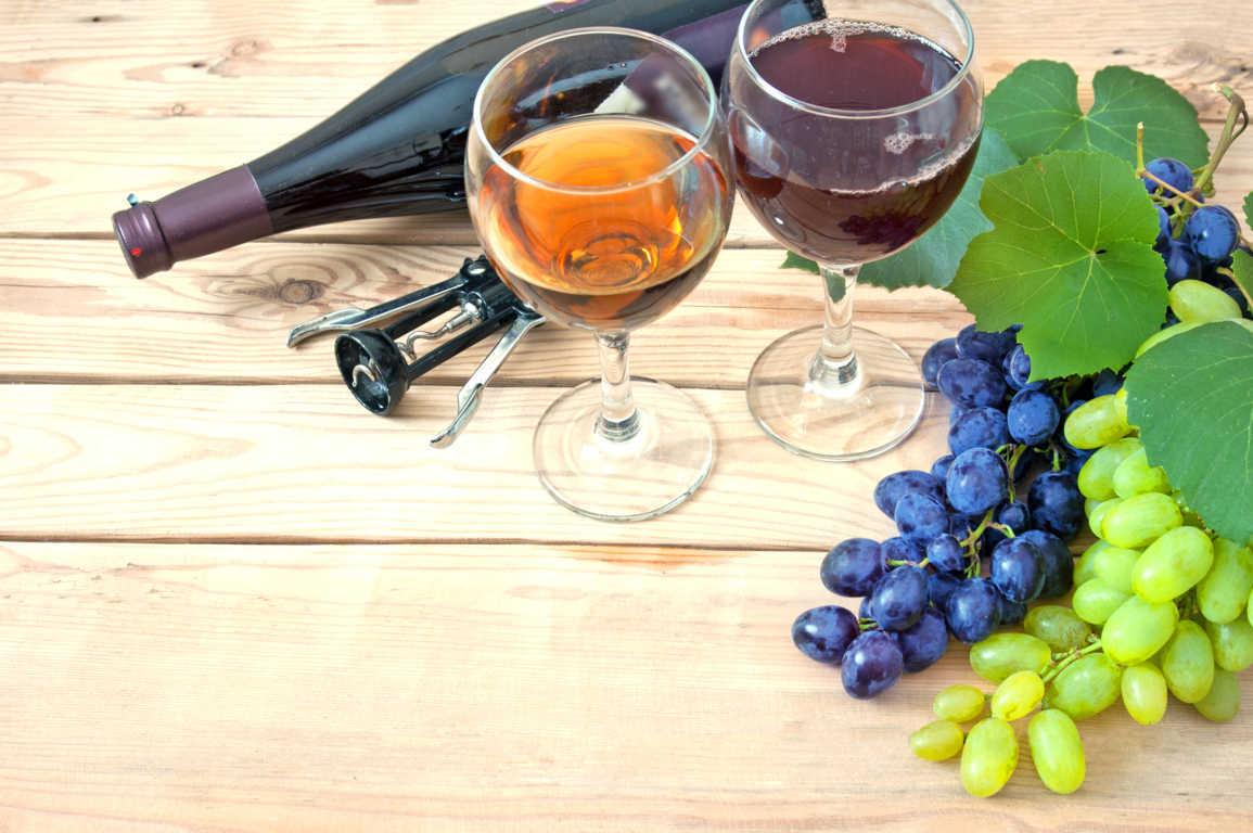 Conoce los 5 tipos de uvas para vino más populares en España